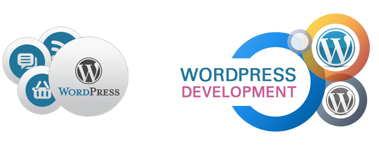 Ways to Improve Your WordPress Development Skills | Theme Vision